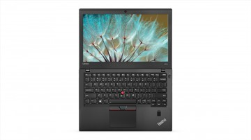 Фото 9 Ноутбук ThinkPad X270 (20HMS0S300)
